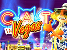 На веб-сайте онлайн-автомат Cat In Vegas